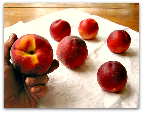 holding a ripe peach The Best Way to Ripen Peaches