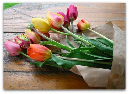 long stem tulip bouquet