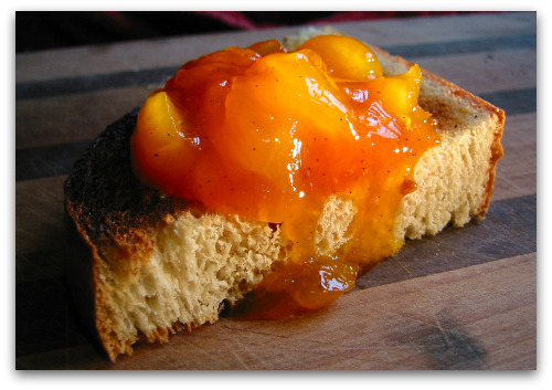apricot jam on toast My Five Favorite Jam Recipes, for Now