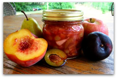 fresh fruit chutney