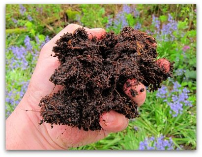 vermiculture worm castings
