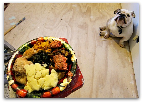 Thanksgiving-leftovers-boz-bulldog