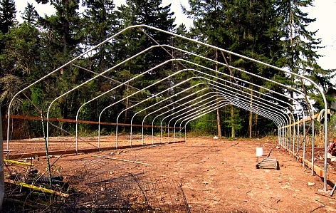 hoophouse bows purlins up  When a Greenhorn Builds a Greenhouse