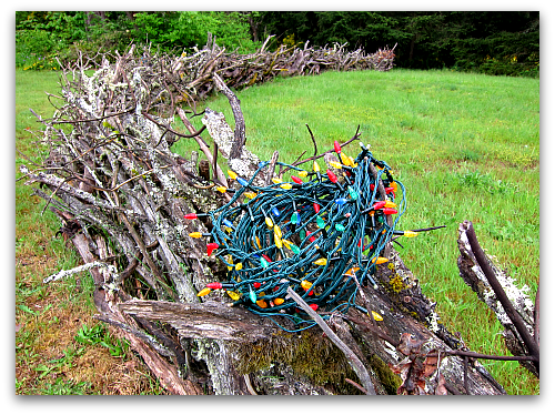 Branch Fence Christmas Lights Ill Take Garden Potpourri for $200, Alex