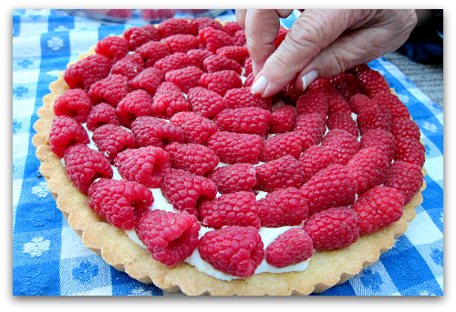 one last raspberry tart  Sour Cream Raspberry Tart: Berry Dairy Delicious