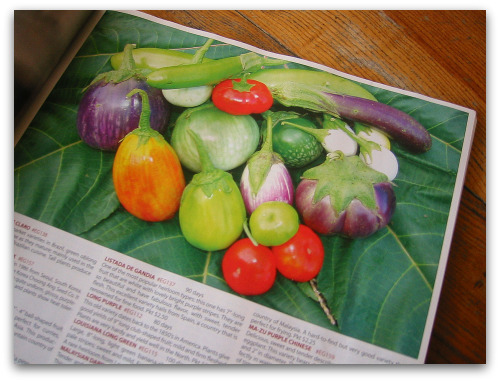 The Best Seed Catalogs: <br>Eye Candy & Hope for the Gardener