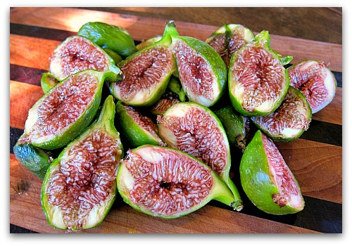 Desert King Fig: At Home in the Pacific Northwest