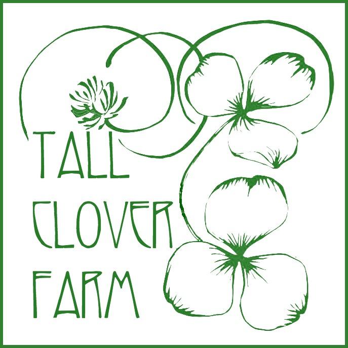 TCF nouveau logo green